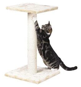 Katzenkratzbaum klein